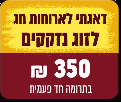 """סעודת חג לנזקק אחד - 350 ש""""ח - 350 ₪"""